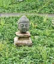 Buddhakopf, Stein