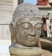 Großer Buddhakopf, Stein